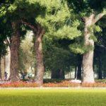 Ένας μεγάλος χώρος πρασίνου, αναψυχής και άθλησης, το πάρκο Γκορυτσάς στον Δήμο Ασπροπύργου