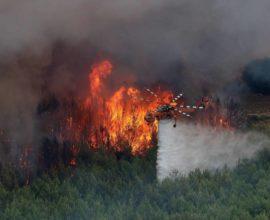 Δήμος Θηβαίων: Ενημέρωση για τις απαγορεύσεις και τις υποχρεώσεις στο πλαίσιο της Αντιπυρικής Περιόδου
