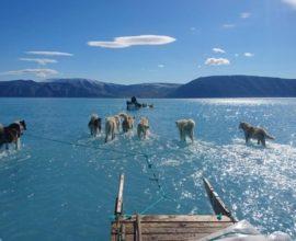 Παγκόσμια ανησυχία: Σε λίγες ώρες έλιωσε το 40% των πάγων της Γροιλανδίας