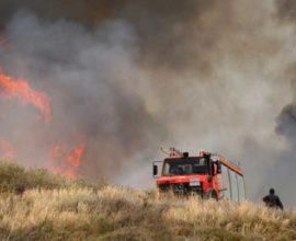 Τέθηκαν υπό μερικό έλεγχο οι πυρκαγιές σε Ριόλο Αχαίας και Άρφα Κέρκυρας