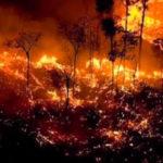 Το καταστροφικό έργο στον Αμαζόνιο συνεχίζεται …εκατοντάδες νέες εστίες , παγκόσμια αγωνία
