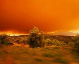 Νέες αποκαλύψεις για τον βασικό ύποπτο της πυρκαγιάς στην Εύβοια – Πού οδηγούν οι έρευνες της Πυροσβεστικής – BINTEO