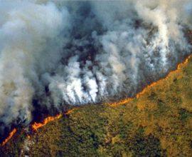 Στο έλεος των πυρκαγιών ο Αμαζόνιος, αποτεφρώνονται χιλιάδες στρέμματα – Σκοτείνιασε το Σάο Πάολο