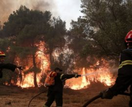 Πυρκαγιές σε Φάρσαλα και Άσπρα Σπίτια Βοιωτίας-Υπό έλεγχο σε Ιωάννινα και Μονεμβασιά