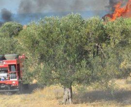 Η εικόνα από τις πυρκαγιές σε Αρκαδία, Ηλεία, Κέρκυρα και Λέρο. Εκκενώθηκαν νωρίτερα προληπτικά χωριά