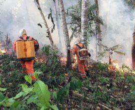 Έρχεται η Σύνοδος του ΟΗΕ για το Κλίμα αλλά ο Αμαζόνιος φλέγεται ακόμη