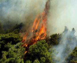 Πυρκαγιά στο Σούλι Θεσπρωτίας