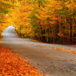 Η ομορφιά του φθινοπώρου