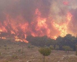 Νέα μεγάλη πυρκαγιά στη Ζάκυνθο
