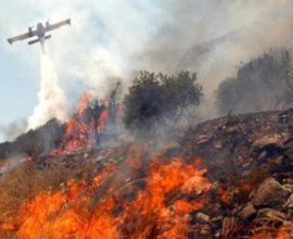 Πυρκαγιά στη Νέα Καρβάλη, στην Καβάλα