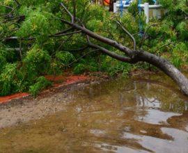 Κλειστά σήμερα τα σχολεία στην Κέρκυρα λόγω της σφοδρής κακοκαιρίας που πλήττει το νησί