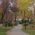 Δήμος Καρδίτσας: Τριάντα φωνές σμίγουν και πορεύονται στον… «Δρόμο της αγάπης»