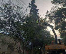 Δήμος Παπάγου-Χολαργού: Απομάκρυνση κλαδιών από τα ηλεκτροφόρα καλώδια