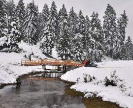 Μιχαλάκης: «Προβλήματα έχουν προκληθεί στις ορεινές περιοχές της περιφέρειας Τρικάλων»