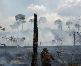 Στοιχεία σοκ – Διπλασιάστηκε η αποψίλωση της Αμαζονίας