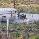 Δήμος Ανδραβίδας – Κυλλήνης: «Προσοχή, μην ρίχνετε τις στάχτες από το τζάκι στους κάδους απορριμάτων»