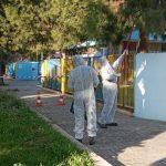 Δήμος Ελευσίνας: Καθαρισμοί πεύκων σε σχολεία και πλατείες