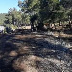 Μηνυτήρια αναφορά Δημάρχου Δυτ. Λέσβου: «ΜΑΤ και μηχανήματα καταστρέφουν το δάσος»