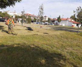 Δήμος Κατερίνης: Καθαρισμός & συντήρηση πρασίνου στις πλατείες Κοκκινοπλιτών, Ηπείρου & στον οικισμό Ανδρομάχης