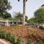 Δήμος Κιλκίς: Ανοιξιάτικες συνθέσεις αισθητικής και κλαδέματα