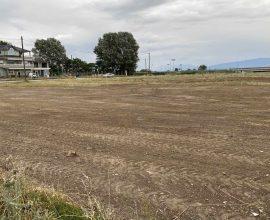 Δήμος Κατερίνης: Επιχείρηση καθαρισμού για την προστασία του περιβάλλοντος & της δημόσιας υγείας στην περιοχή του Πέλεκα