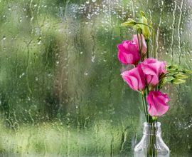 Άστατος καιρός με τοπικές βροχές και καταιγίδες – Μικρή άνοδος της θερμοκρασίας