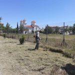 Δήμος Κατερίνης: Καθαρισμός χόρτων και συντήρηση του πρασίνου στο παραλιακό μέτωπο & στο Β΄ Κοιμητήριο