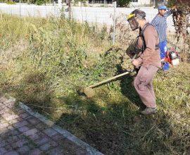 Δήμος Κατερίνης – Αντιδημαρχία Περιβάλλοντος & Πρασίνου: Καθαριότητα στους κυκλικούς κόμβους