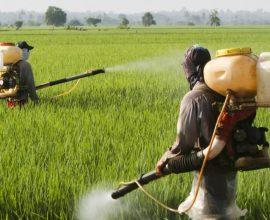 Π.Ε. Αν. Αττικής: 17ος Κύκλος Εφαρμογών Ψεκασμών για την καταπολέμηση των κουνουπιών