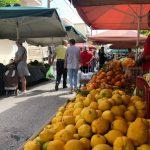 Δήμος Άργους – Μυκηνών: Σε λειτουργία ξανά η λαϊκή αγορά  Άργους