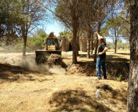 Περιφέρεια Κρήτης: Με επιτυχία ο περιβαλλοντικός καθαρισμός στο δασάκι Αφραθιά του Δήμου Φαιστού