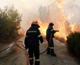 Πυρκαγιά στις Κεχριές Κορινθίας- Επιχειρούν ισχυρές πυροσβεστικές δυνάμεις
