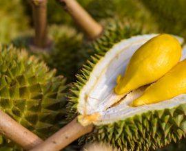 Αυτό είναι το πιο βρωμερό φρούτο στον κόσμο και κοστίζει 1.000 δολάρια