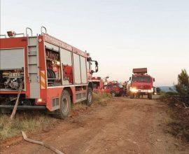Καλαφατέλης: «Ο Δήμος Διονύσου επαγρυπνεί καθημερινά και είναι σε διαρκή ετοιμότητα για τον κίνδυνο πυρκαγιάς»