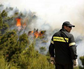 Σε εξέλιξη φωτιά στη Χαλκιδική