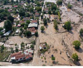 Δήμος Καρδίτσας: Ενημέρωση για τις ζημιές σε ζωικό και φυτικό κεφάλαιο
