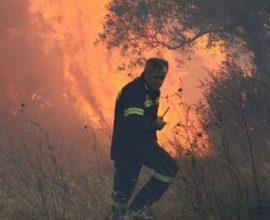 Μεγάλη φωτιά σε δασική έκταση στη Λαυρεωτική