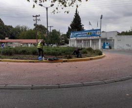 Δήμος Κατερίνης: Συστηματικές εργασίες συντήρησης, καθαρισμού και εξωραϊσμού του πρασίνου