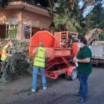 Δήμος Κατερίνης: Έμφαση στη συντήρηση πρασίνου και στον καλλωπισμό κοινόχρηστων