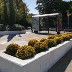 Συνεχίζονται οι φθινοπωρινές φυτεύσεις στον Δήμο Κηφισιάς