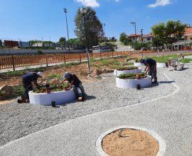 Δήμος Θέρμης: Δράση ενημέρωσης και ευαισθητοποίησης για το νέο «Πάρκο Φυτοποικιλότητας» στην Καρδία