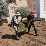 Δήμος Αιγάλεω: Αναβάθμιση του αστικού πρασίνου και παρεμβάσεις εξωραϊσμού