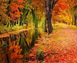 Φθινοπωρινός ο καιρός – Που θα βρέξει