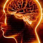 ΠΔΕ: Ενημερωτική εκπομπή για την πρόληψη εγκεφαλικών επεισοδίων