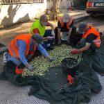 Δήμος Αλίμου: Ξεκίνησε το λιομάζωμα και φέτος!
