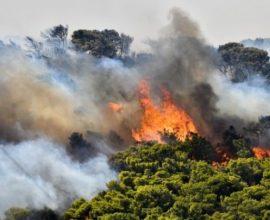 Σε εξέλιξη μεγάλη πυρκαγιά στο Σουφλί Έβρου