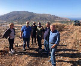 Αυτοψία στις καμένες εκτάσεις του Δήμου Σαρωνικού