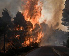 Φωτιά στην Αρκαδία: Μεγάλη κινητοποίηση από την Πυροσβεστική.