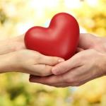 Δήμος Διονύσου: Έκκληση στους πολίτες για προσφορά αιμοπεταλίων