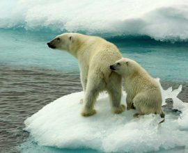 «Βράζει» ο πλανήτης: Οι θερμοκρασίες είναι οι υψηλότερες των τελευταίων 125.000 ετών